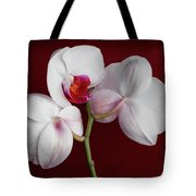 Trio Of Orchids Tote Bag
