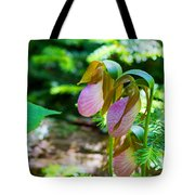 Trio Of Slippers Tote Bag