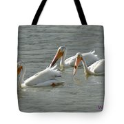 Trio Pelicans Tote Bag
