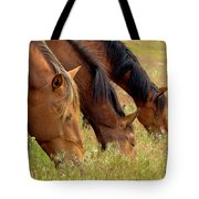 Triple Mustang Treat Tote Bag