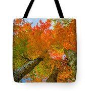 Triple The Maples Tote Bag