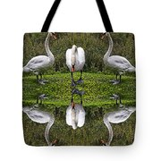 Triplets In Reflection Tote Bag