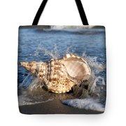 Triton Shell  Tote Bag