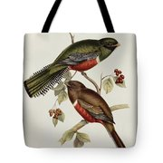 Trogon Collaris Tote Bag by John Gould