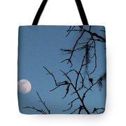 Trompe L Oeil Moon Tote Bag