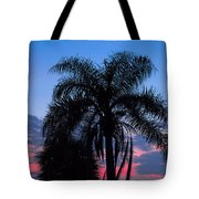 Tropic Sunset In Floirida Tote Bag
