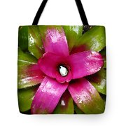 Tropic Wonder Tote Bag