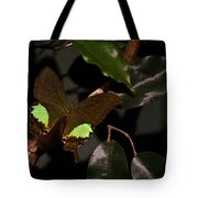 Tropical Buterfly Tote Bag