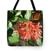 Tropical Butterfly On Flower Tote Bag