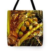 Tropical Dreams 1 Tote Bag