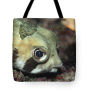Tropical Fish Porcupinefish  Tote Bag