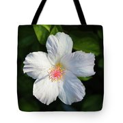 Tropical Flower 2 Tote Bag by T A Davies