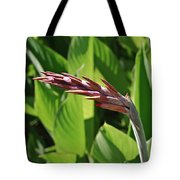Tropical Flower Buds Tote Bag