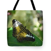 Tropical Garden Beauty Tote Bag