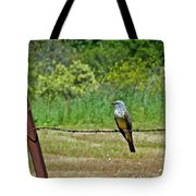 Tropical Kingbird Tote Bag