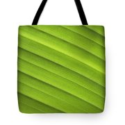 Tropical Leaf Patterns Tote Bag