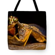 Tropical Mantispid Tote Bag