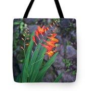 Tropical Orange Lily Tote Bag