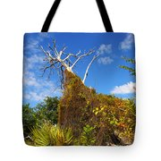 Tropical Plants In A Preserve In Florida Tote Bag