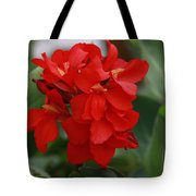 Tropical Red Canna Lilly Tote Bag