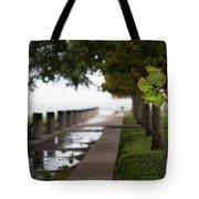 Tropical Storm Hermine Tote Bag