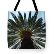Tropical Summer Palm Tree Tote Bag