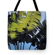 Tropical Sunlight And Shadow Tote Bag