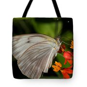 Tropical White Butterfly Tote Bag by April Wietrecki Green