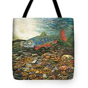 Trout Art Fish Art Brook Trout Suspended Artwork Giclee Fine Art Print Tote Bag