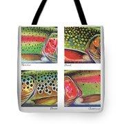 Trout Colors Tote Bag