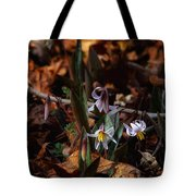 Trout Lillie In Lost Valley Tote Bag