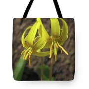 Trout Lily 1068 Tote Bag