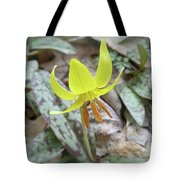 Trout Lily Wildflower - Erythronium Americanum Tote Bag