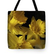 Trumpet Daffodils Tote Bag