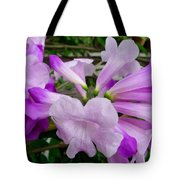 Trumpet Flower 11 Tote Bag