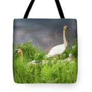 Trumpeter Swan Family - Portrait Tote Bag