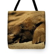Trunk Show Tote Bag