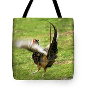 Trying To Fly Tote Bag
