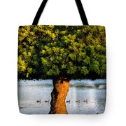 Trying To Get My Ducks In A Row. Tote Bag