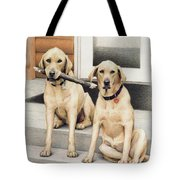 Tucker And Lily Tote Bag