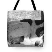 Tuckered Tote Bag