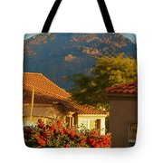 Tucson Beauty Tote Bag