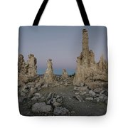 Tufas At Dusk No.2 Tote Bag by Margaret Pitcher