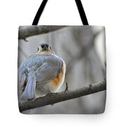 Tufted Titmouse 02 Tote Bag