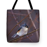 Tufted Titmouse In Winter Tote Bag