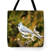 Tufted Titmouse On A Branch Tote Bag