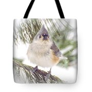 Tufted Titmouse Snow Face Tote Bag