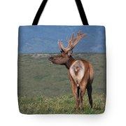 Tule Elk Bull Bugling Tote Bag