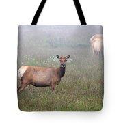 Tule Elk In Fog Tote Bag