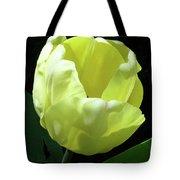 Tulip 0755 Tote Bag